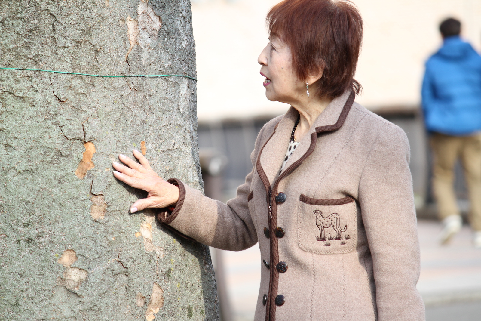 木と会話できるおばあちゃん,シニア,写真,画像,素材,老人,高齢者,フリー