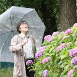 雨とおじいちゃんと上野の紫陽花